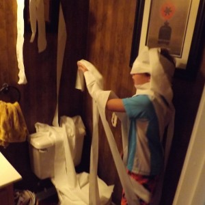 Toilet Destroyed